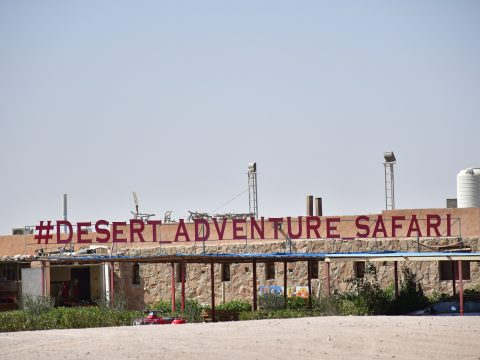 Red Sea association for Safari